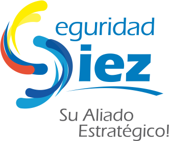 Logo Seguridad Diez